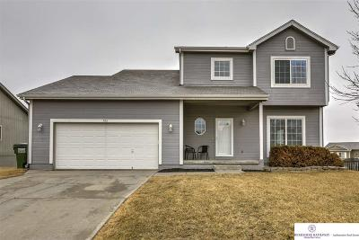 Papillion Single Family Home New: 906 Edgewater Drive