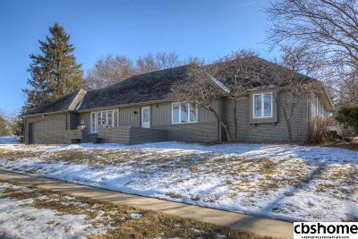 Omaha Single Family Home New: 9425 Hascall Street