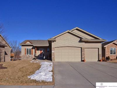 Omaha Single Family Home New: 17322 S Creek Circle