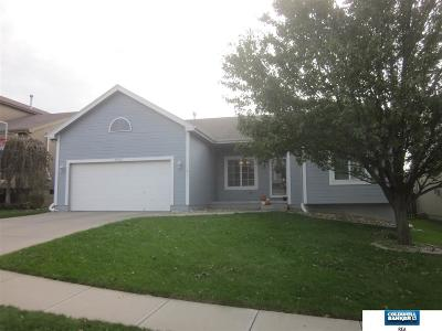 Omaha Single Family Home New: 18627 L Circle