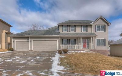 Omaha Single Family Home New: 17522 Jefferson Street