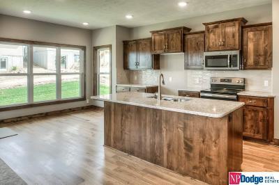 Bellevue Single Family Home New: 2014 Geri Circle