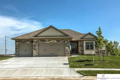 Omaha NE Single Family Home New: $425,000