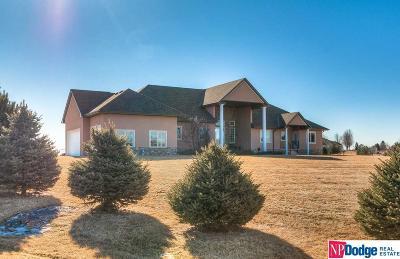 Fremont Single Family Home For Sale: 1133 Ponderosa Drive