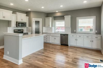 Bellevue Single Family Home For Sale: 2018 Geri Circle