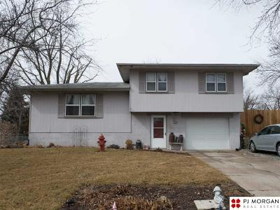 Springfield Single Family Home For Sale: 850 N 4th Street