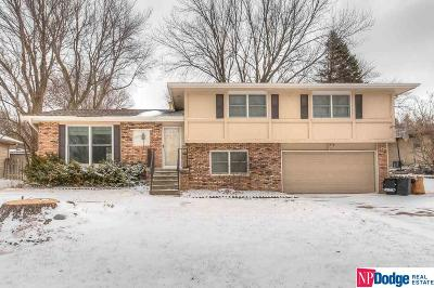 Bellevue Single Family Home For Sale: 309 Marian Avenue