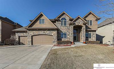 Omaha Single Family Home For Sale: 19258 Poppleton Avenue