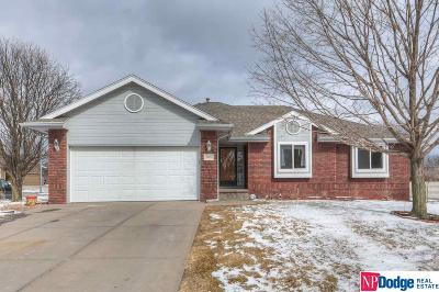 Papillion Single Family Home For Sale: 2004 Eagle Ridge Drive