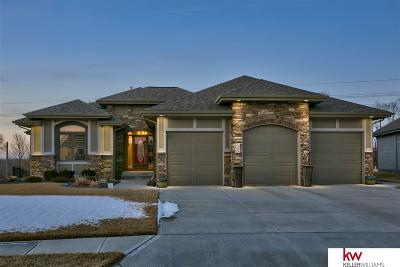 Omaha Single Family Home For Sale: 12420 Mormon Street