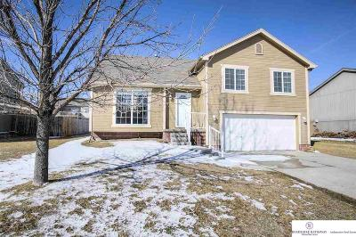 Papillion Single Family Home New: 1810 Southview Drive