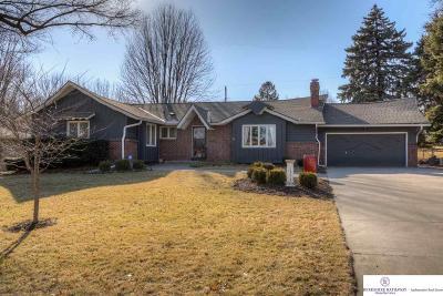 Omaha Single Family Home New: 3278 S 104 Avenue