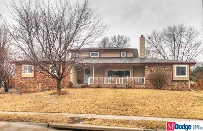 Omaha Single Family Home New: 6362 S 94 Street