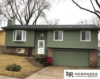 Papillion Single Family Home New: 312 Cheyenne Drive