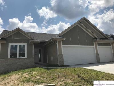 Omaha Single Family Home New: 2525 N 166 Street