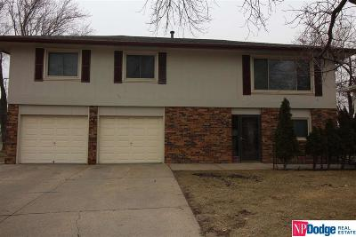 Omaha NE Single Family Home New: $175,000