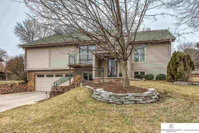 Single Family Home New: 2003 S 139 Circle