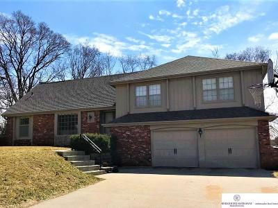 Omaha NE Single Family Home New: $309,000
