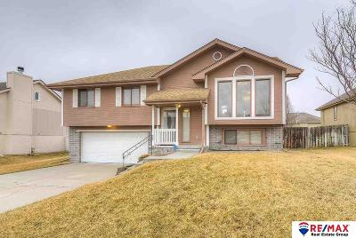 Papillion Single Family Home New: 707 Eagle View Drive