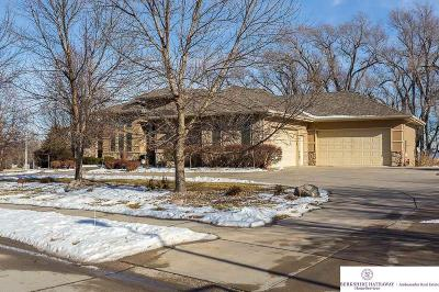 Omaha Single Family Home For Sale: 9903 S 165 Street