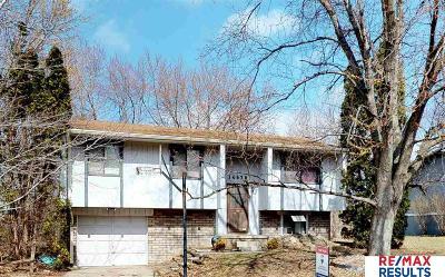 Omaha NE Single Family Home New: $125,000