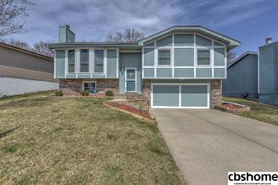 Omaha NE Single Family Home New: $172,500