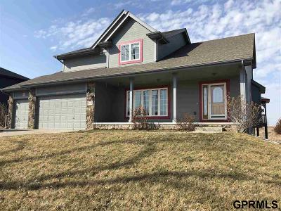 Plattsmouth Single Family Home For Sale: 3224 Fairway Drive