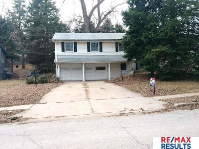 Single Family Home For Sale: 9373 Ohio Street