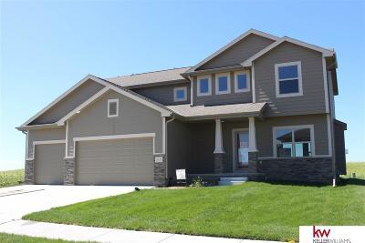 Bennington Single Family Home For Sale: 7378 N 170th Street