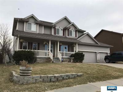 Single Family Home For Sale: 18807 Chandler Street