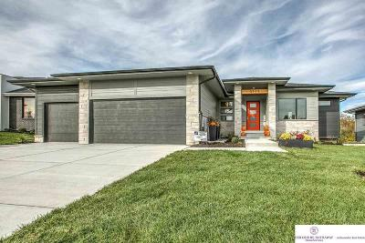 Omaha Single Family Home For Sale: 3934 S 207 Street