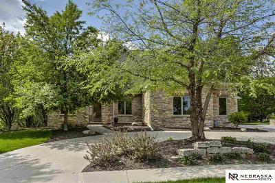 Omaha Single Family Home For Sale: 19263 Shirley Street