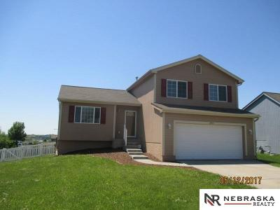 Bellevue Single Family Home For Sale: 2503 Arlington Street