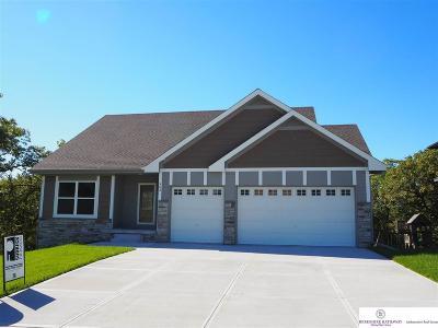Louisville Single Family Home For Sale: 903 Southridge Drive