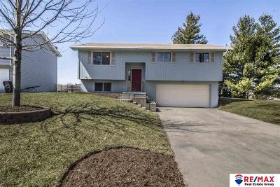 Bellevue Single Family Home For Sale: 1002 Evergreen Avenue