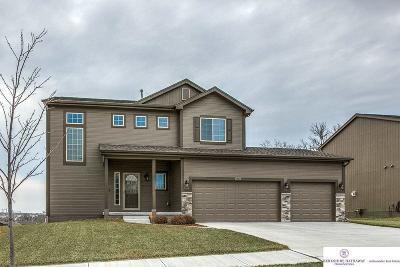Omaha Single Family Home For Sale: 7513 N 142 Street