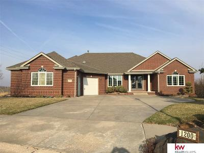 Ashland Single Family Home For Sale: 1200 Lakeview Circle