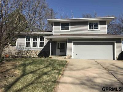 Plattsmouth Single Family Home For Sale: 1405 Elizabeth Drive