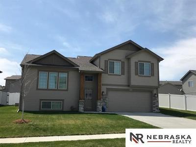 Sarpy County Single Family Home New: 8212 S 190 Avenue