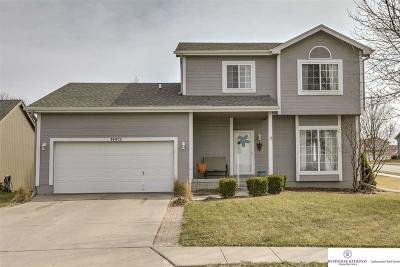 Omaha NE Single Family Home New: $215,000
