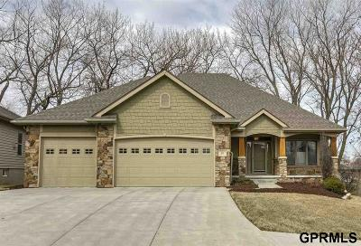 Elkhorn Single Family Home New: 802 S 184th Street