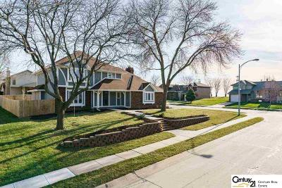 Papillion Single Family Home New: 601 Michael Drive