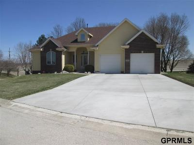 Plattsmouth Single Family Home New: 14208 Penny Drive