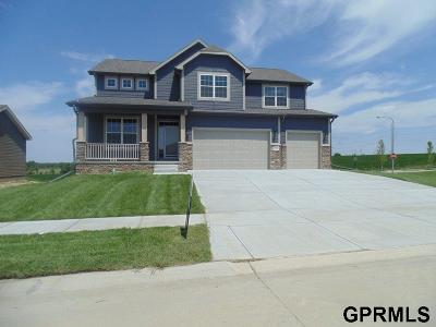 Papillion Single Family Home New: 11502 S Shepard Street