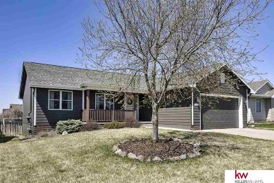 Single Family Home New: 12610 S 218th Street