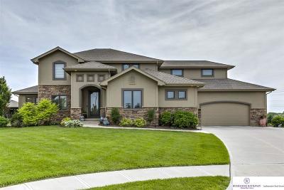 Omaha Single Family Home For Sale: 19927 Logan Circle