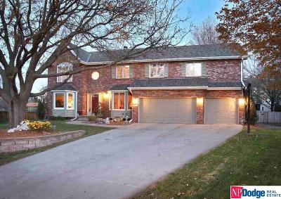 Omaha NE Single Family Home New: $369,950