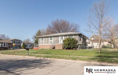 Bellevue Single Family Home For Sale: 10808 Hogantown Drive