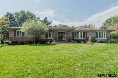 Omaha Single Family Home For Sale: 962 S 94 Street