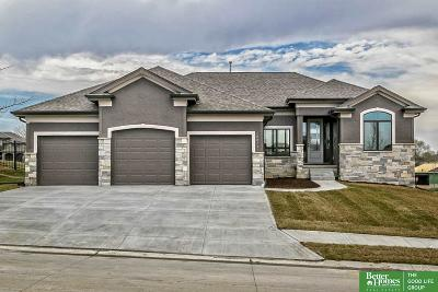 Omaha Single Family Home For Sale: 10815 S 175th Street